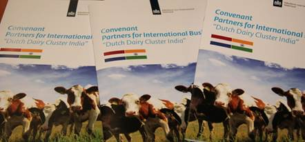Dutch Dairy Cluster India   CID LINES