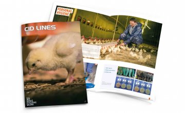 Catalogue poultry